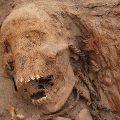 انسانی تاریخ میں بچوں کی سب سے بڑی قربان گاہ دریافت
