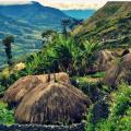 جنوب مشرقی ایشیاء کے ایک اسلامی ملک انڈونیشیا کی عجیب و غریب حقائق اور دلچسپ ثقافت کے بارے میں جانیئے۔